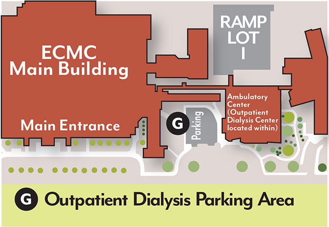 ECMC-kidney-map